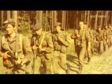 Как проштрафившиеся десантники получили от генерала дяди Васи не наказание, а отпуска