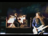 Iron Maiden - wicker man