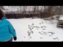 Новая свалка в парке Кузьминки