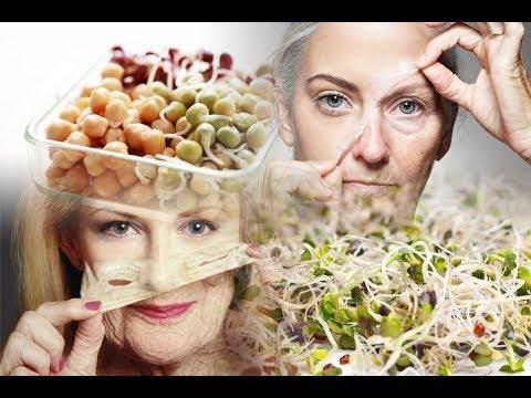 Секретный рецепт питания отодвигающий старость смотреть онлайн без регистрации