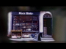 Black books | книжный магазин Блэка