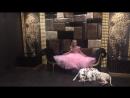 Съёмка фотопроекта «101 далматинец» для журнала ✨Fashion kids✨.