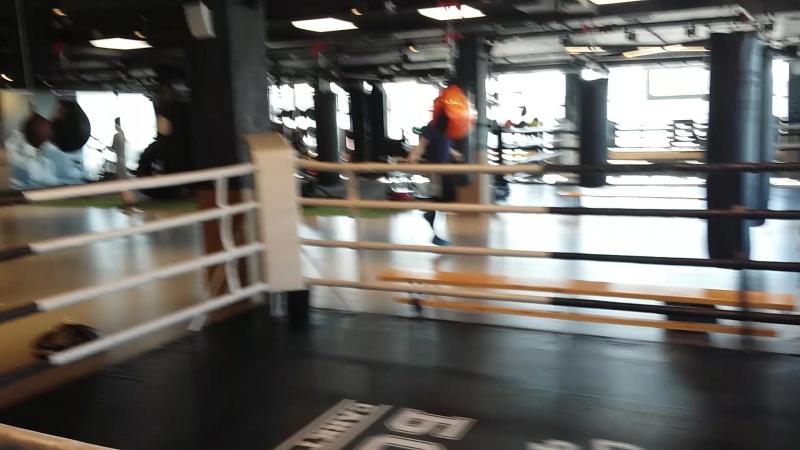 спб академия бокса, первый рабочий день