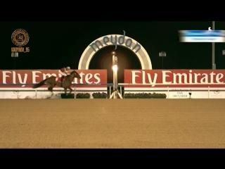 """Сенсационная победа  российской  лошади  North America  на  «Dubai Word Cup Carnival. Super Saturday"""""""