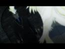 Ди Грэй-мен / D.Gray-man 2 сезон (8-13 серии)