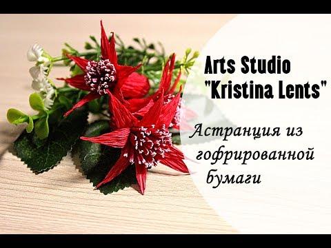 Мастер класс Астранция из гофрированной бумаги The flowers