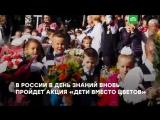 Дети вместо цветов