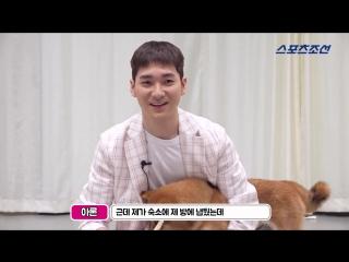 [VIDEO] Арон для Sport Chosun's Celeb's Pet