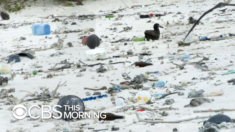 Ambitious effort to clean up great Pacific garbage patch gets underway