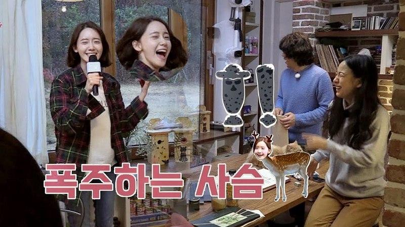 점점 효리化 돼가는 윤아(!) 소길리 폭주하는 사슴♨ 효리네 민박2 11회