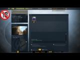 Live: Bludnik Stream