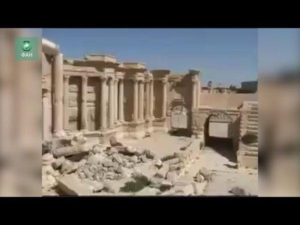 Сирия и РФ возрождают Пальмиру глава одного из музеев САР рассказал ФАН о ходе сотрудничества