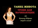 Уроки восточных танцев для начинающих Москва 8 Фронтальная качалка бедрами