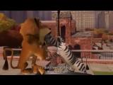 Мадагаскар на английском с субтитрами (часть 1)Trim