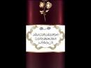 Video-1538930946.mp4