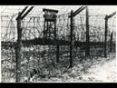 Концлагерь немецких и японских военнопленных Большой Бор Национальный парк Нижняя Кама Тарловка