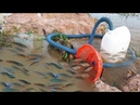 Believe This Fishing Unique Fish Trapping System Using Long Pipe Big Plastic Bottle By Smart Boy