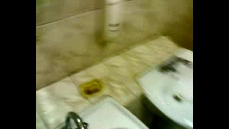 Человек-молекула в туалете