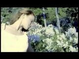 Валерий Залкин.Одинокая ветка сирени (полная версия клипа)