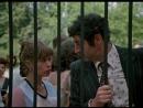 «Дамы приглашают кавалеров» (1980) - комедия, мелодрама, реж. Иван Киасашвили