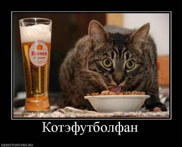 http://cs831.vkontakte.ru/u10701839/33863820/x_38db4531.jpg