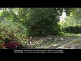 Как проходит реставрация Ботсада ПГНИУ