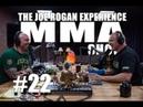 JRE MMA Show 22 with Bas Rutten