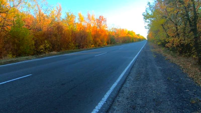 Дорога в Осень:)