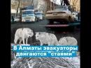 В Алматы эвакуаторы двигаются стаями