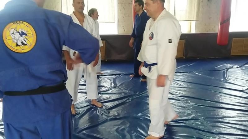 Взросл. техника прохода под ркуой( риоте дори учикайтен никкё)