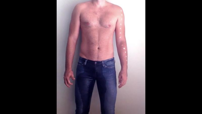 Videos - pissed jeans (285)