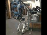 Совершая ошибки роботы вызывают доверие людей.