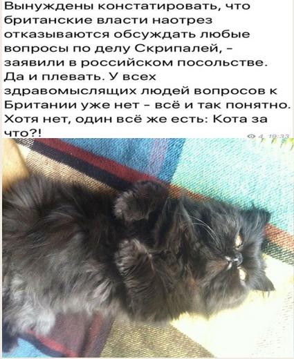 https://pp.userapi.com/c831109/v831109209/17acbf/UGxKTJ69Wtk.jpg