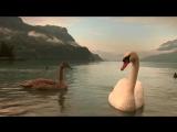 Фото - Фильм (93) - Удивительный Мир
