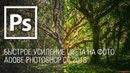 Быстрое усиление цвета на фото Adobe Photoshop CC 2018 || Уроки Виталия Менчуковского