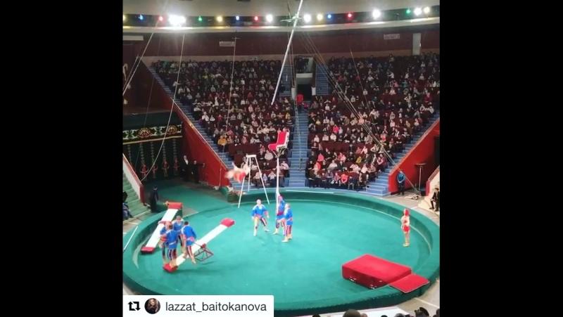 Цирк подкидная доска