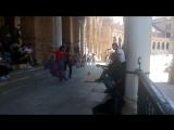 Фламенко на площади Испании в Севилье