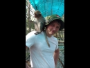 Вьетнам Нячанг экоПарк обезьянки