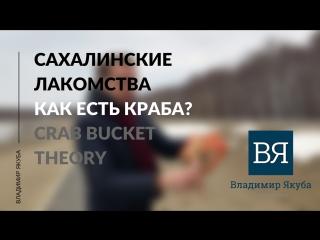 Как есть краба? Сrab bucket theory