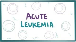 Acute myeloid lymphoblastic leukemia causes symptoms pathology