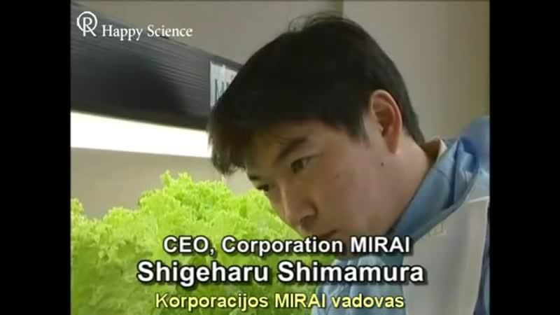 Вертикальные фермы Япония MIRAI