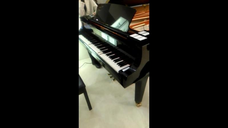 Самостоятельный рояль 2
