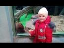 Тряхнул стариной, вспомнил старые навыки по редактированию видео, итак Московский зоопарк!