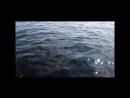 Приколы на рыбалке Хит парад рыболовных неудач топ минус 13