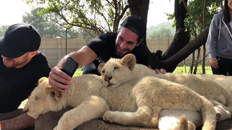 SB_Group| Superstars roam with lions in Johannesburg, South Africa
