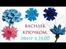 Цветы крючком Василек крючком тунисским вязанием по схеме Вяжем по схемам