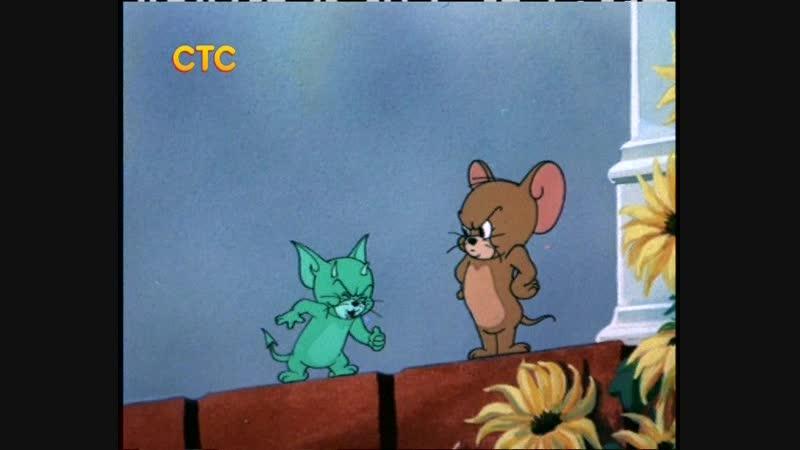 Поражение мышонка