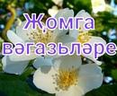 Закир Фаттахов-Мухаметов фото #5