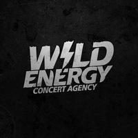 Логотип WILD ENERGY CONCERT