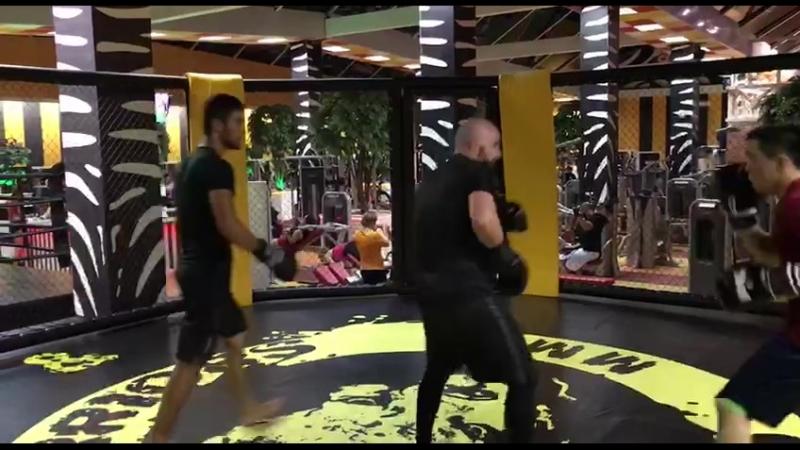 Тренировка ММА
